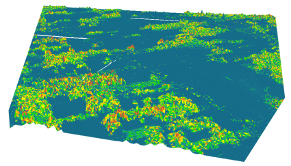 Drone Digital Surface Model